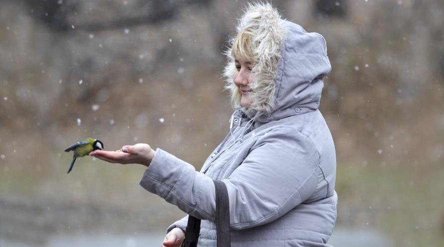 потепление в Украине