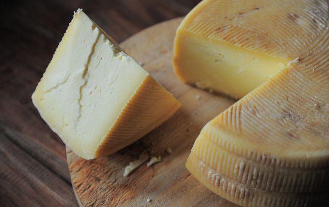 поддельный сыр