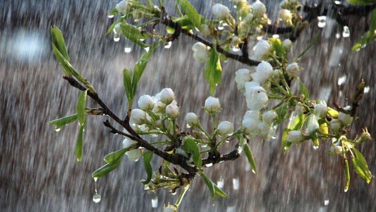 Погода в Украине весной