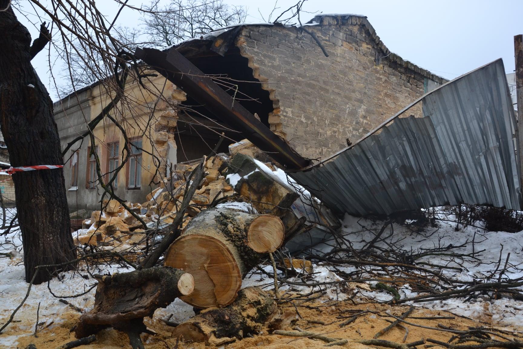 дерево пробило крышу