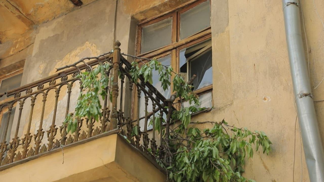 балкон дерево упало