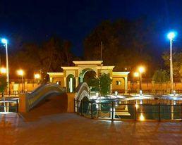 зоопарк ночь